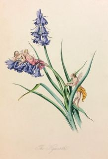 Whimsical Hand-Colored Plate Book of Flowers and Fairies, 1851