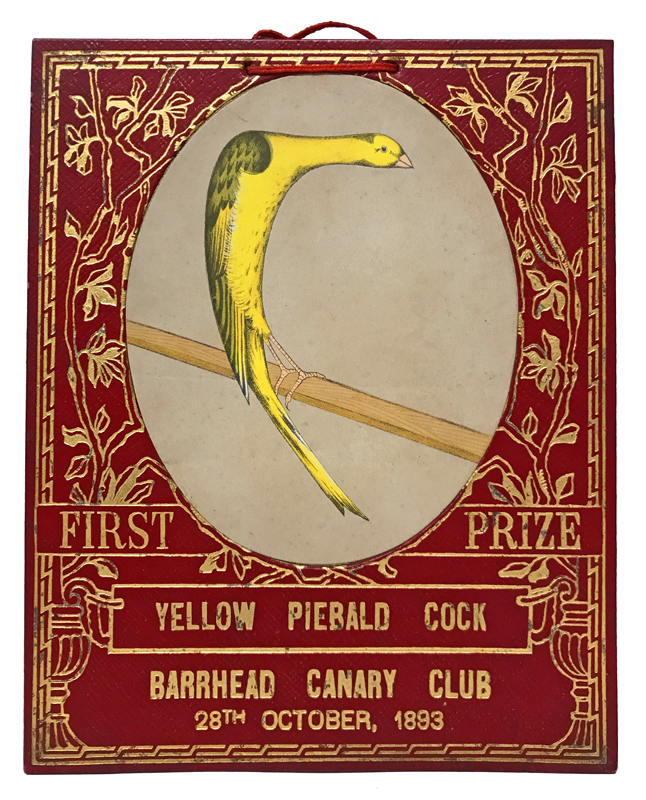 Group of six gilt-tooled morocco prize cards for the Barrhead Canary Club, Scotland. DESIGN.
