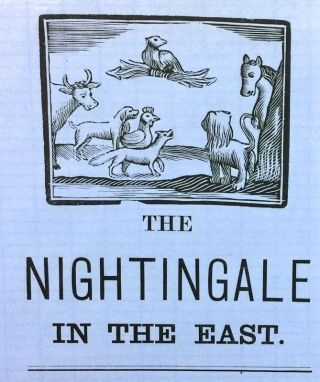 The Nightingale in the East. Florence Nightingale.