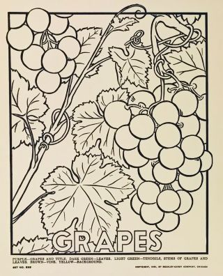 Picture Posters to Color: Fruits and Vegetables. DESIGN, F. Raymond Elms